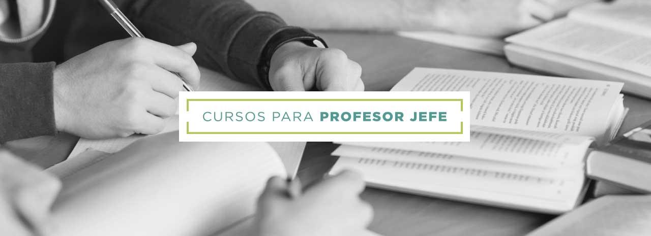 Cursos e-learning profesores de aula