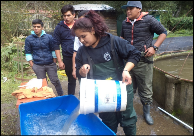 Exitosa experiencia de alumnos de Liceo Pencopolitano en Piscicultura Pangue