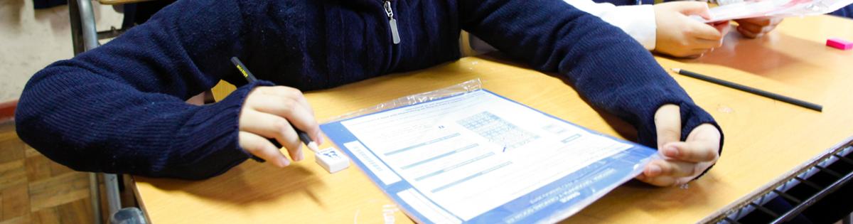 Diferencias Frente al Sistema que Mide la Calidad de la Educación en Chile