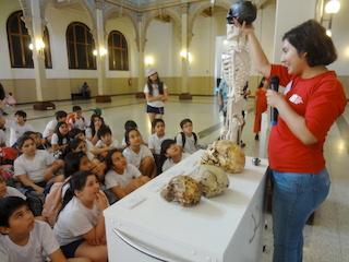 Talleres de Educación en el Museo Nacional de Historia Natural