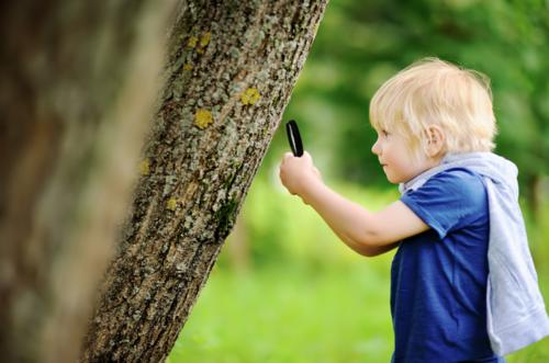 ¿La clave de la curiosidad? Hacer las preguntas correctas